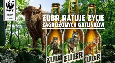 Piwo Żubr zmienia etykiety