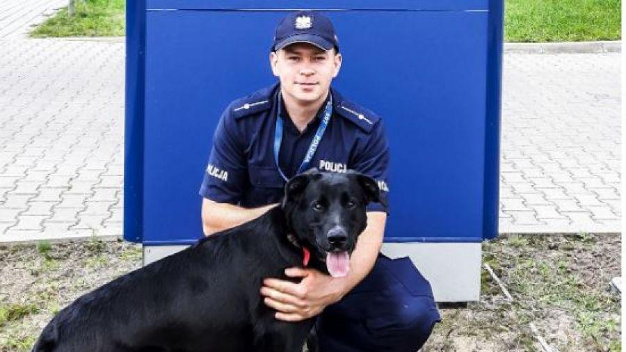 policjant zaadoptował psy
