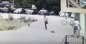 Mężczyzna kopnął psa