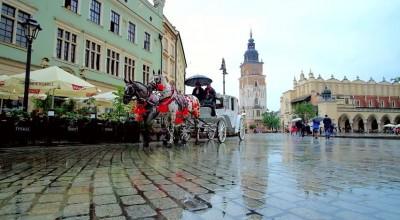 Antysmogowy chodnik w Krakowie