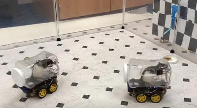 Szczury potrafią kierować małymi pojazdami