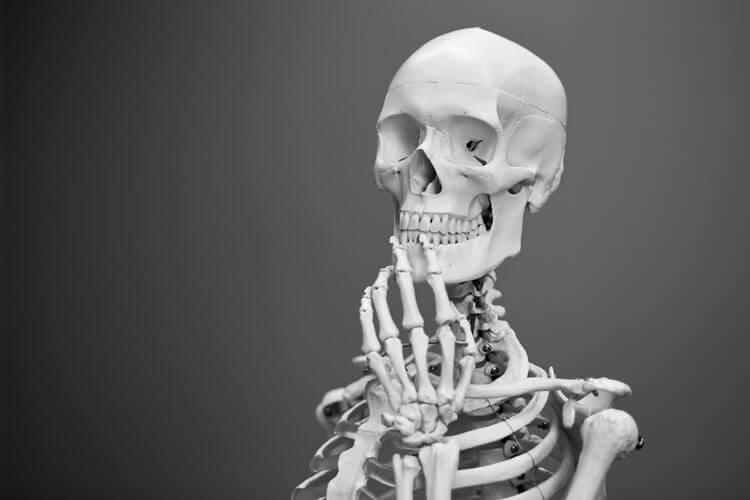 Sztuczna kość