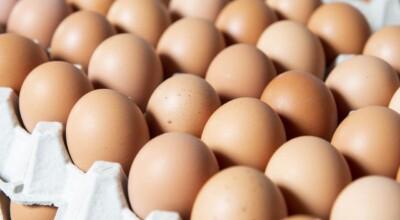 wyzwanie zjedzenia 50 jajek