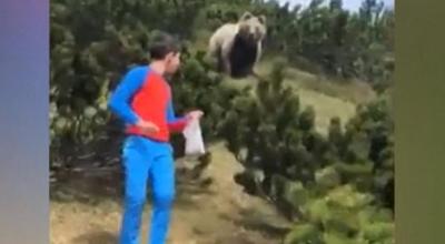 bliskie spotkanie z niedźwiedziem