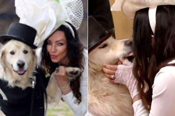 kobieta poślubiła psa