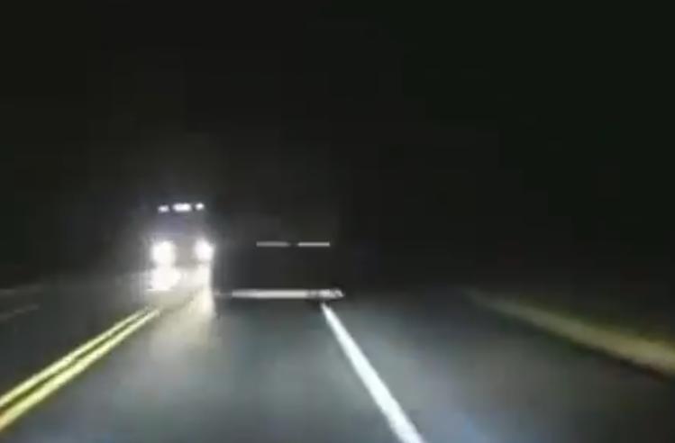 niespodzianka na drodze