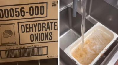 zaskakująca prawda o cebuli