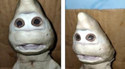 zmutowany rekin z ludzką twarzą