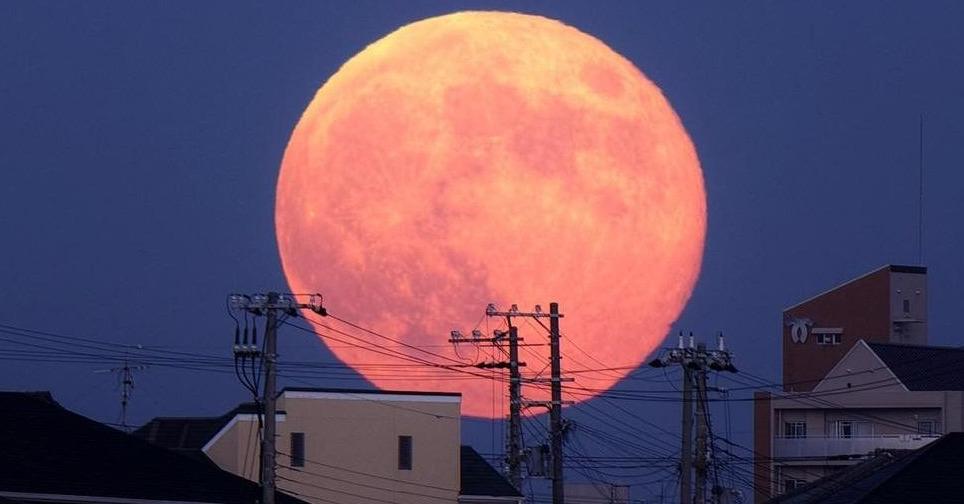 różowy superksiężyc