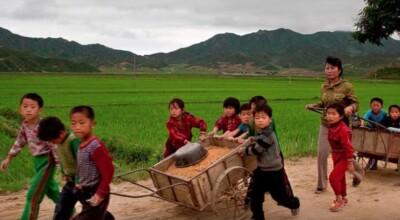 Głód w Korei Północnej
