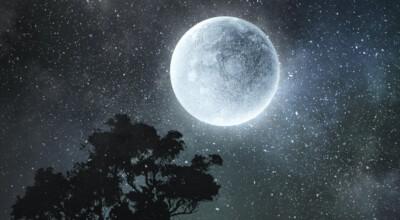 Kukurydziany Księżyc