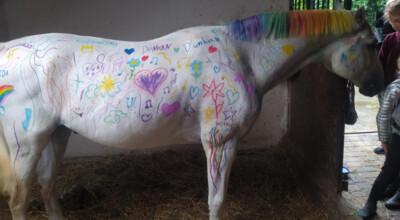 Dzieci pomalowały konia